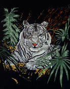 White Tiger - Jungle